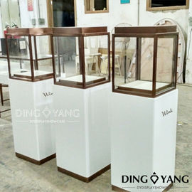 Exhibition 450X450X1350MM Store Jewelry Display Cases